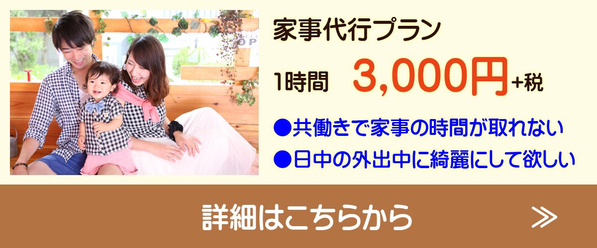 家事代行プラン 1時間3,000円(税抜き) ●共働きで家事の時間が取れない ●日中の外出中に綺麗にしてほしい